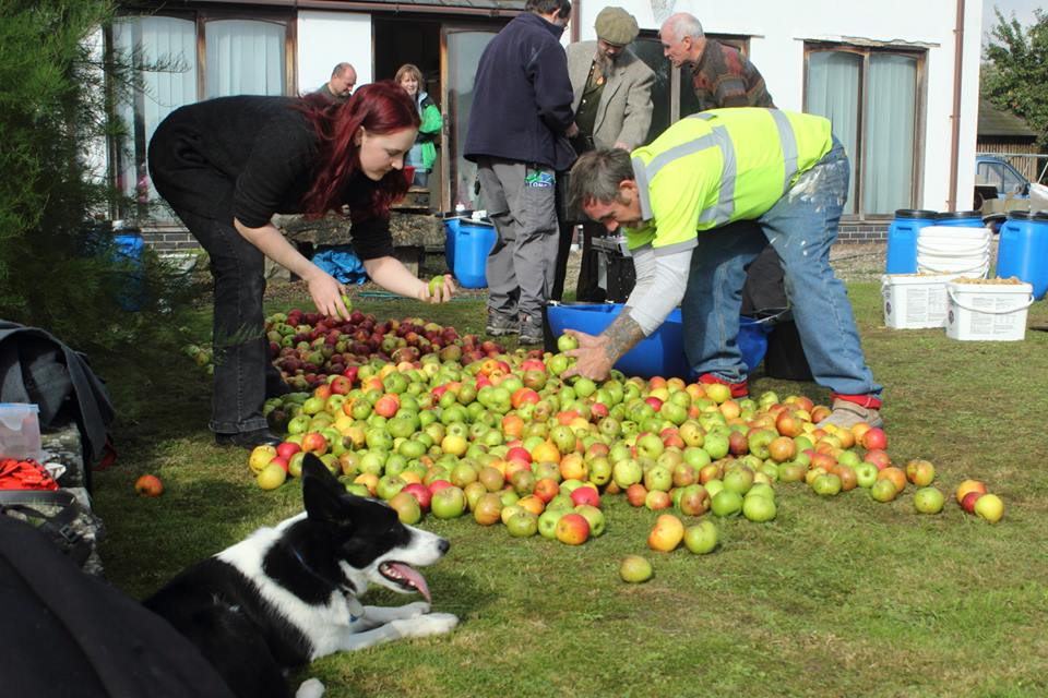 Apples, Sustainability and local business on Radio 4!